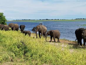 Africa Trip 13